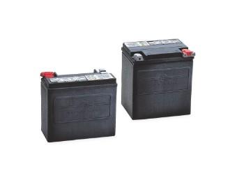AGM Motorrad Batterie für Sportster XL und XR ab '04 , Buell 112
