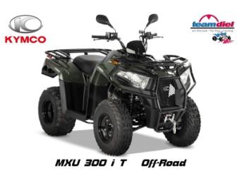300 MXUi T LOF Seilwinde