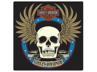 HD Spade Skull Tin Sign