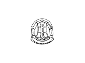 Helmpolster - COMP LIGHT INTERIOR
