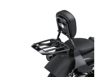 Air Foil Luggage Rack 54291-11 Sportster Dyna Softail