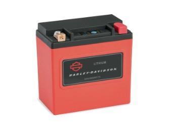 6Ah Lithium-LiFe-Battery *66000174*