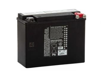 21 AH AGM Batterie 66000210 Touring Modelle '80 - '96