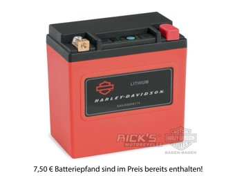 6Ah Lithium-LiFe-Batterie *66000174*