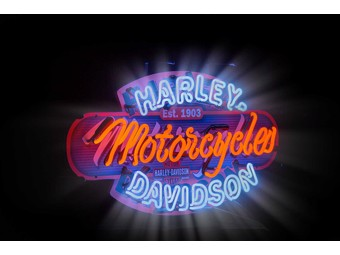 """H-D Motorcycles Neon Sign""  220 V HDL-15406"