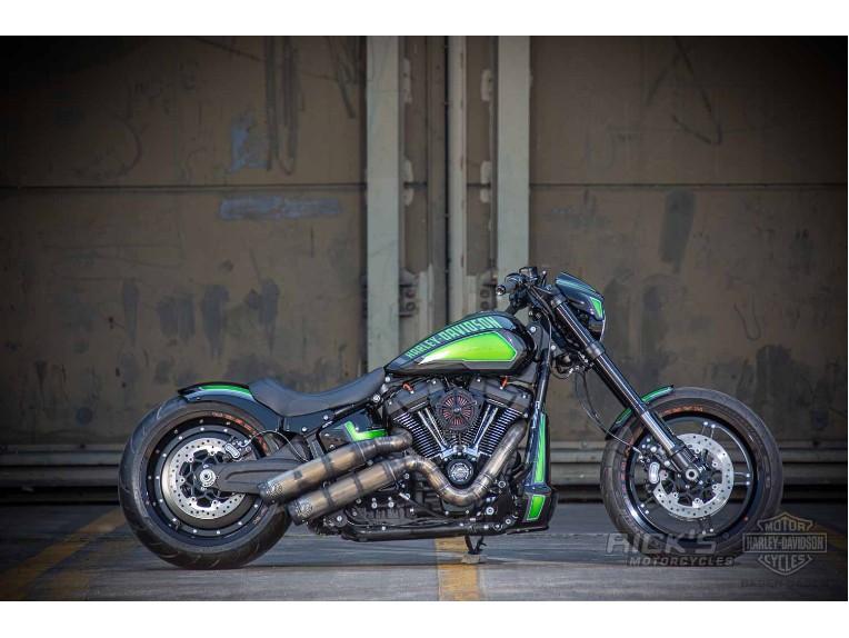 Harley-Davidson-FXDR-Custom-Ricks-018