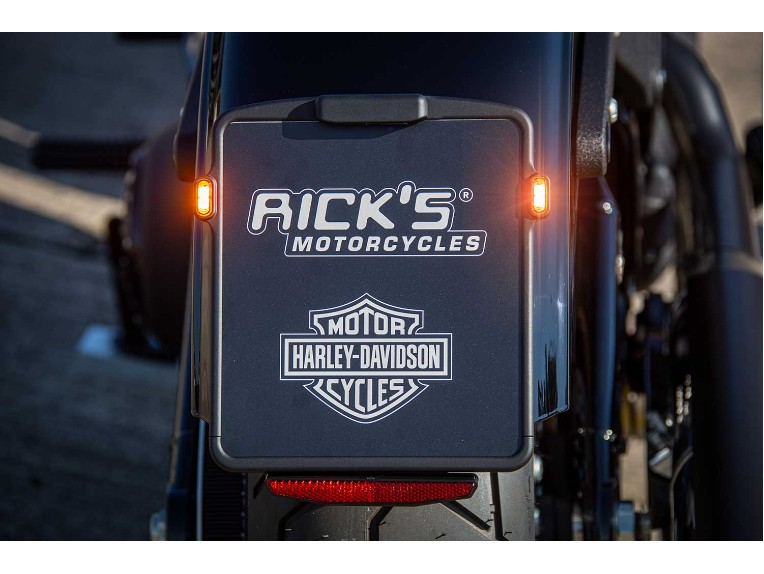 Harley-Davidson_-_Lowrider_S-023