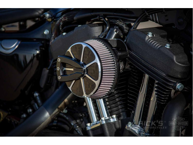 Harley-Davidson-Sportster-Iron-Ricks-003