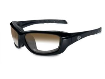 Gravity LA Brown Gloss Sonnenbrille