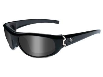 Curve Smoke Grey Gloss Sonnebrille