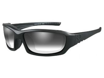 Gem LA Grey Matt Frame Sonnenbrille