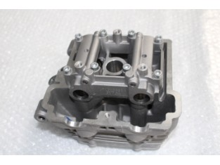 Zylinderkopf RS 125 Euro 4