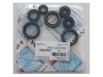 Simmeringsatz Motor Rotax 122