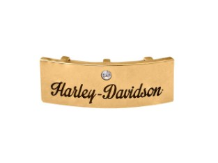 Rally Element Harley-Davidson