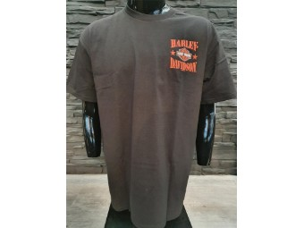 Men Shop Shirt 'Soaring Warrior'