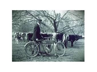 Grußkarte zum Ruhestand 'Cows come Home'