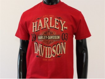 T-Shirt, Arches, Harley-Davidson, Rot