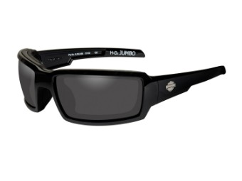 Wiley X Jumbo Smoke Grey Motorrad Brille
