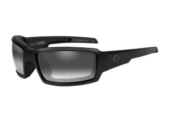 Wiley X Jumbo Light Adjusting Motorrad Brille