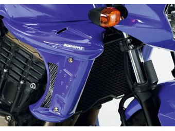 Kühlerverkleidung Kawasaki Z750