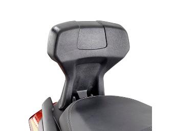 Beifahrer-Rückenlehne X-Max 300 /400
