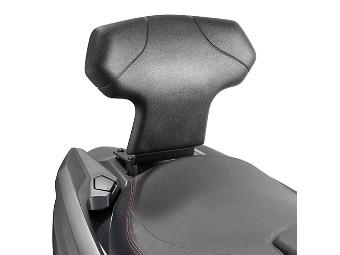 Beifahrer-Rückenlehne für AN 400 Bu rgman
