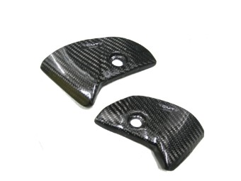 Carbon Protection Rear Panel