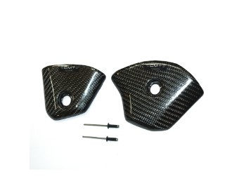 Carbon Protection Rear Panels