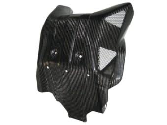 Carbon Motorschutz CRF1000 u. DCT Bj.15-